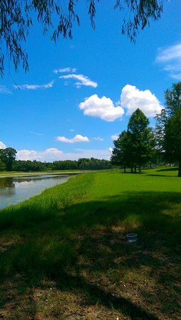 Bayou Segnette State Park: Beautiful day!