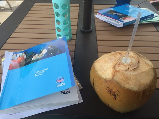 Turneffe Island, เบลีซ: Getting to work with my PADI course book and a coconut!
