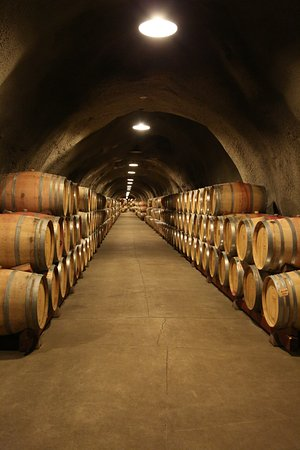 Rutherford, CA: Wine cellar