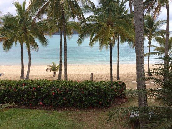 Beach Club: photo1.jpg