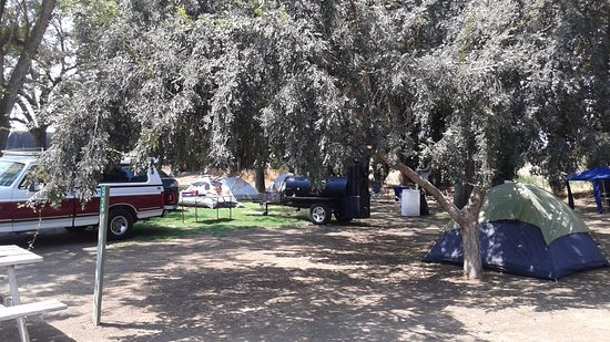 Reedley, CA: Shaded Camp Site with 20 campers, BBQ and vehicles