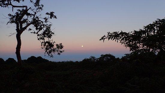 Puerto Villamil, Ecuador: Demandez de rester au retour pour admirer le coucher de soleil.