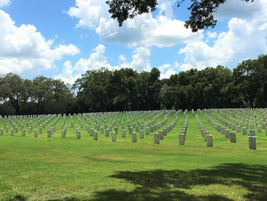 Bushnell, FL: Inside the Cemetery
