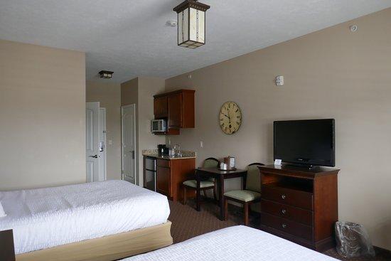 Landmark Inn and Suites : Miniküche