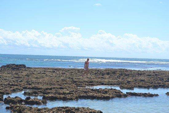Segunda Praia Beach: Segunda praia durante a maré baixa, dá pra caminhar bastante