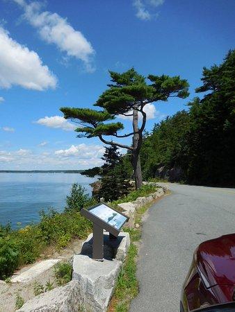 Harbourside Drive: Off Harborside Drive