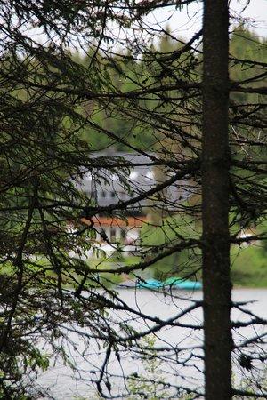 Schlehdorns Seehof Foto