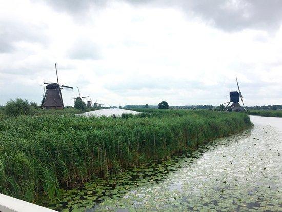 Boottocht Rotterdam - Kinderdijk:  Kinderdijk