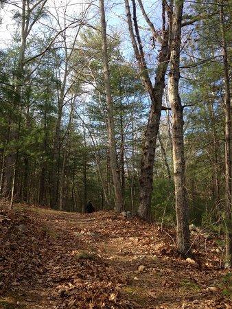 Crozet, Вирджиния: Year round changing beauty!