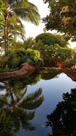 Grand Waikikian by Hilton Grand Vacations: 20160714_184647_large.jpg