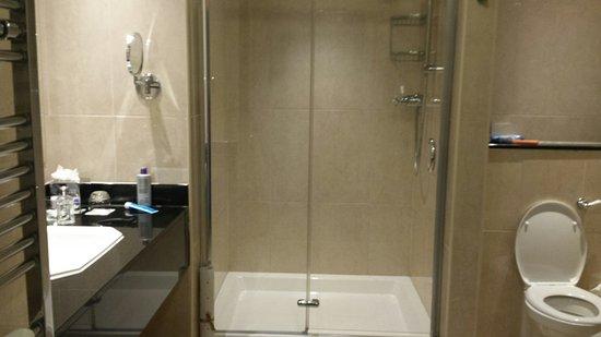 The Heritage Killenard: shower facility as well as bath