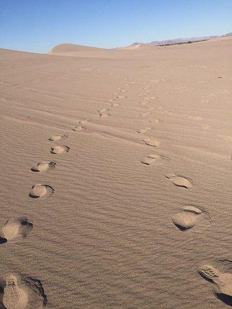 نيفادا: Big Dune