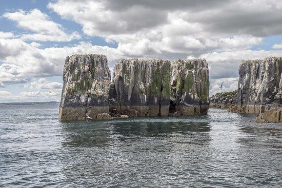 Farne Islands: Inner Farne