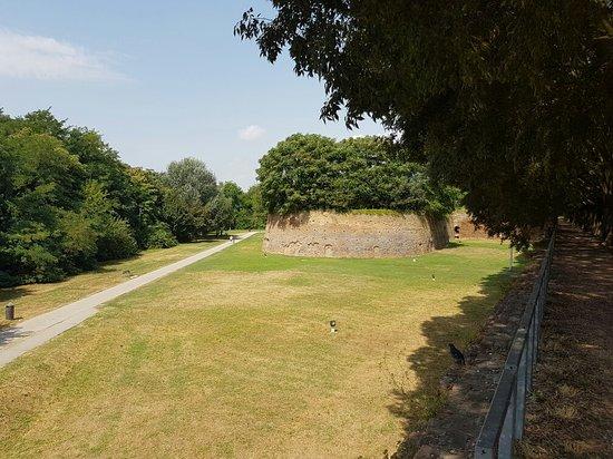 Le Mura di Ferrara: 20160731_114157_large.jpg
