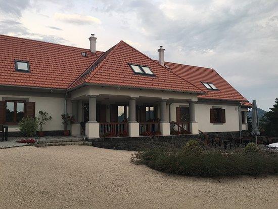Villa Tolnay Vendeghaz