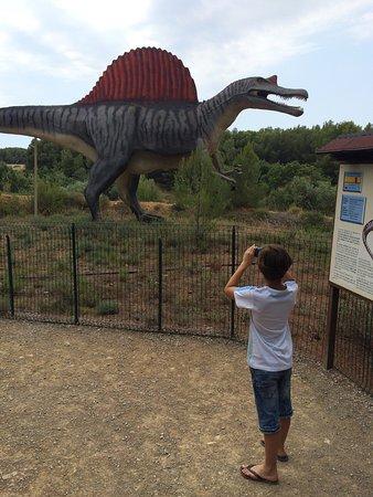 Musee - Parc des Dinosaures