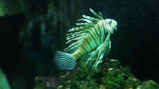 Alexandria Zoological Park Photo