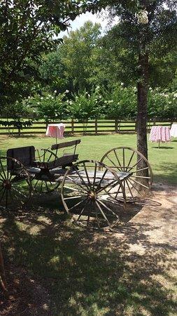 Eatonton, Τζόρτζια: Crooked Pines Farm Grounds