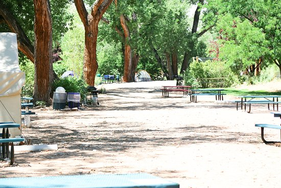 Foto de Up the Creek Campground