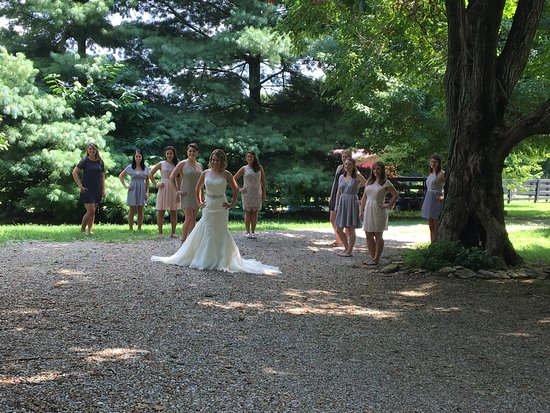 Springfield, KY: Bride and her bridesmaids on the grounds