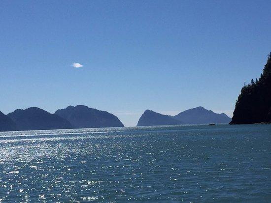 Kenai Fjords Tours:  Kenai Fjords Tours