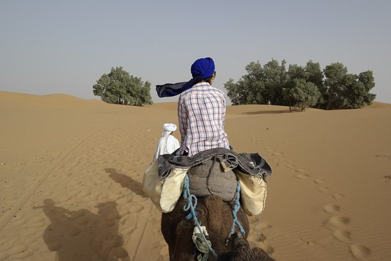 Auberge Les Roches: Burping camels, Berber whiskey, and a night in the desert.