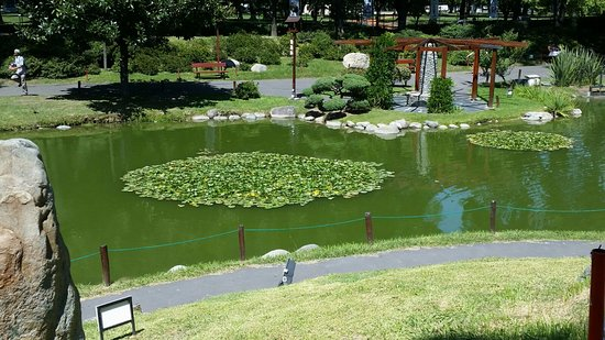 japanese garden jardin japones