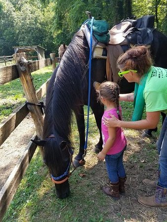 Mustang Alley Horse Rescue Riding Stables : Just having fun at Mustang Alley!