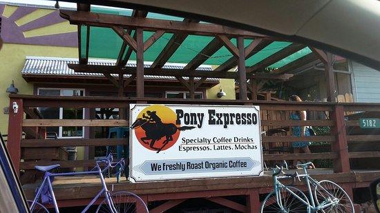 Pony Expresso 사진