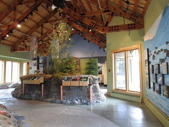 Parque Nacional y Reserva Wrangell-St Elias, AK: Educational exhibits