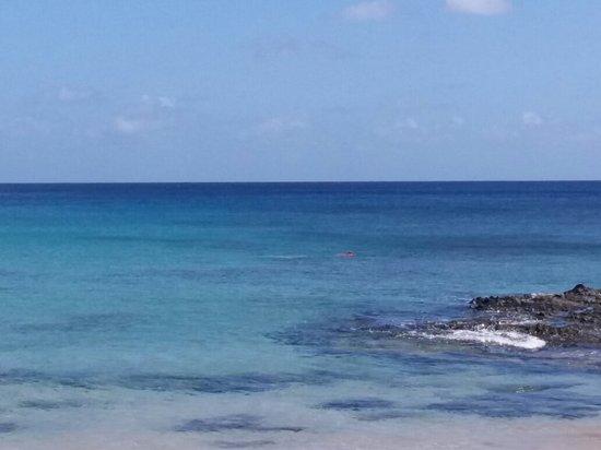 Conceicao Beach張圖片