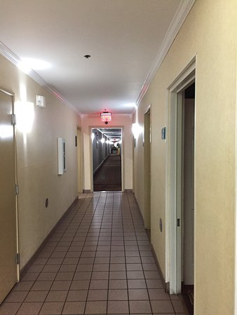 BEST WESTERN PLUS Carlton Suites: photo4.jpg