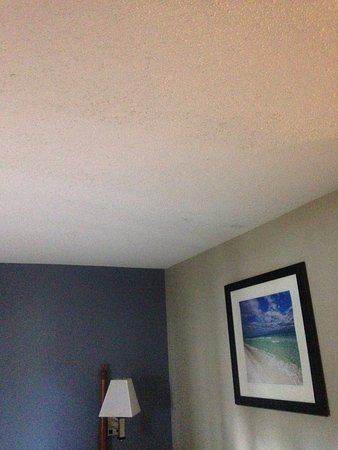 Suburban Extended Stay Pensacola-NAS: Mold on ceiling