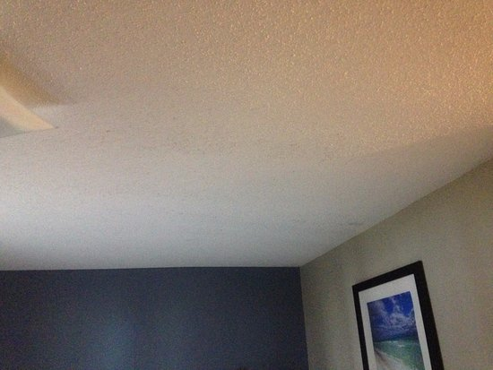 Suburban Extended Stay Pensacola-NAS: Tried to get a better picture of mold on ceiling