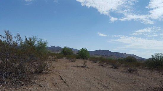 Buckeye, AZ : FB_IMG_1469984580335_large.jpg