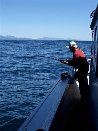 Trailhead Resort: Halibut fishing at Swifture Bank