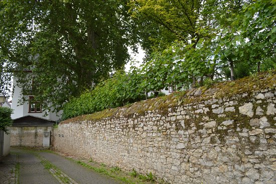 Hattenheim, Alemania: Mur d'enceinte de l'hôtel