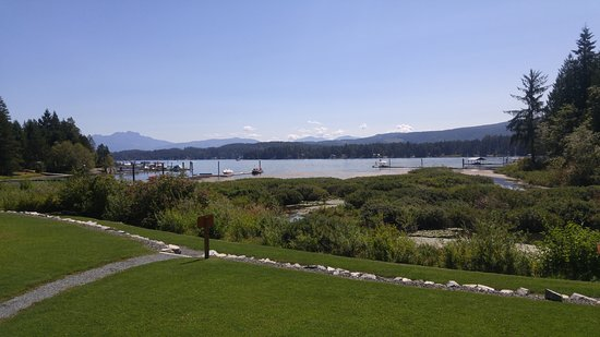 Port Alberni, Kanada: Great view of the lake and the beaver dam on the right.