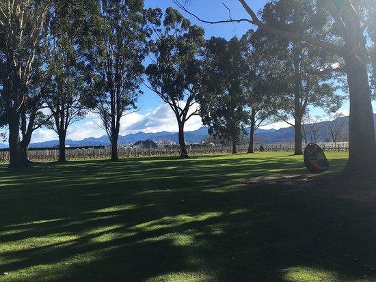 Rapaura, Nieuw-Zeeland: photo1.jpg