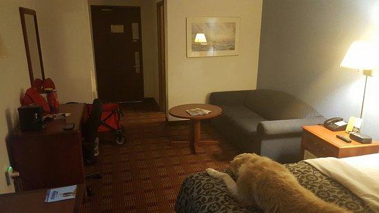 荷蘭戴斯飯店張圖片