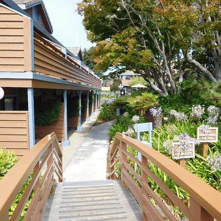 BEST WESTERN Seacliff Inn: View of building 1