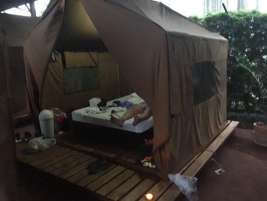 Arenal Backpackers Resort: photo0.jpg