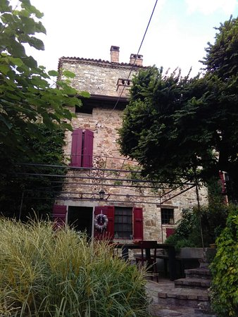 La corte di Woodly: from the garden, early morning, only the music of nature from the middle of the gardens.