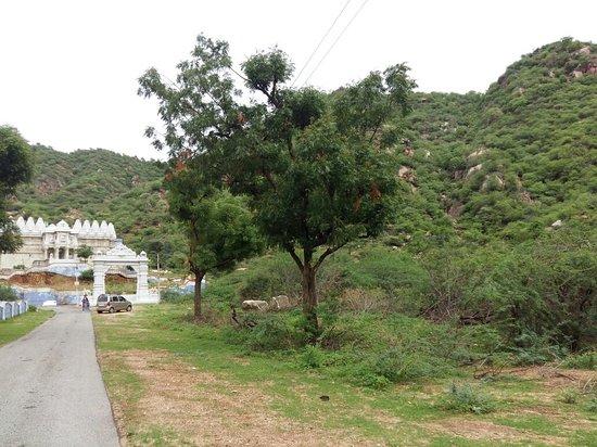 Sirohi, India: Mirpur Temple