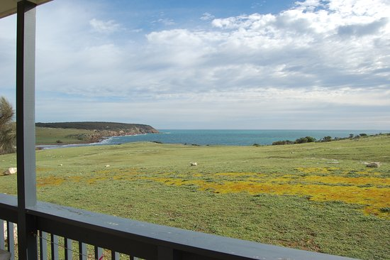 Waves and Wildlife Cottages: Sea View