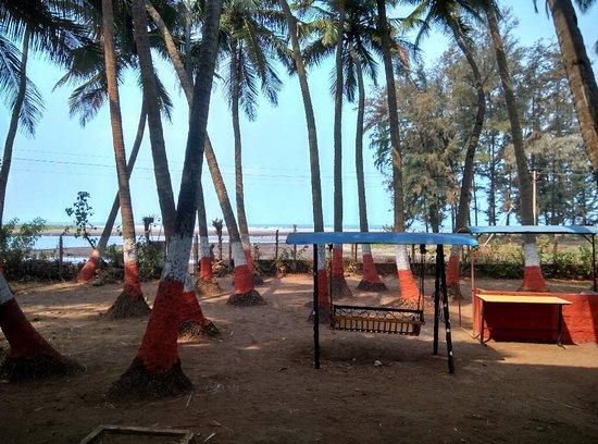 Surali Wadi Beach Resort Dapoli Indien Omd Men Och Prisj Mf Relse Tripadvisor