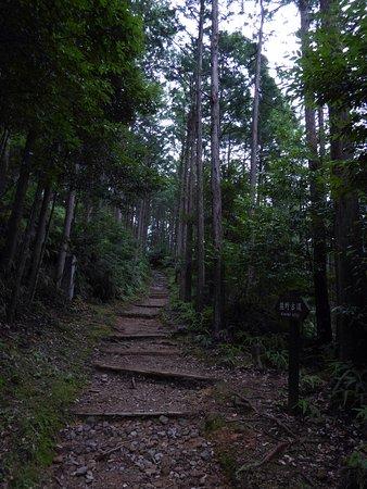 Kinki, Japon : photo5.jpg