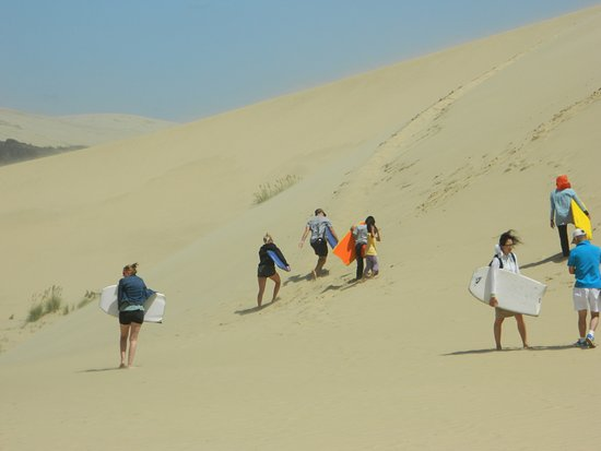 Pukenui, Nueva Zelanda: Sand Dune Surfing