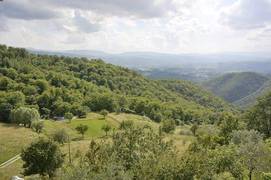 Vicchio, Italia: Panorama da Attulaio
