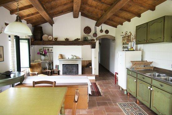 """Vicchio, Italia: Cucina-salotto appartamento """"Il coccodrillo"""""""